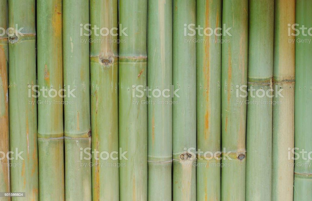 Bambus Wand Hintergrund Textur Muster Braun Natur Gartenhaus Tapete