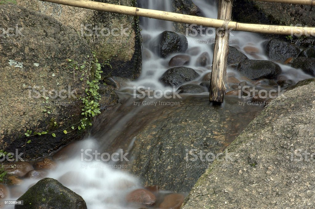 Bamboo with stream royalty-free stock photo