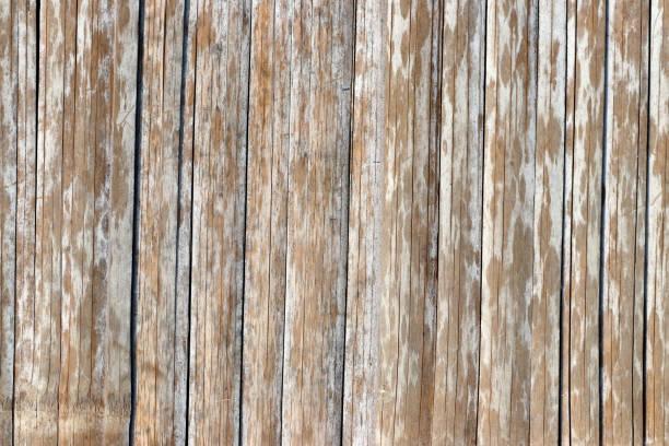 Bamboo wood background stock photo