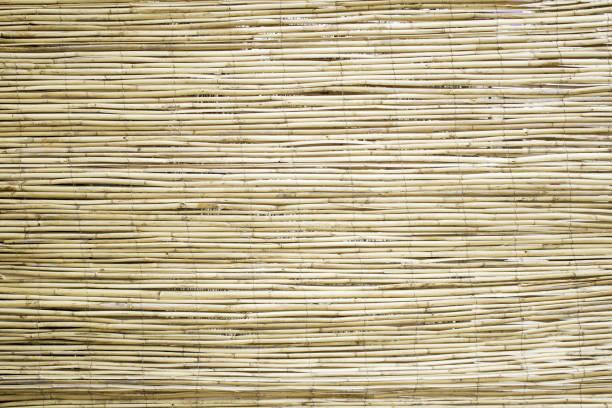 bambus holz - fliesen verlegen stock-fotos und bilder