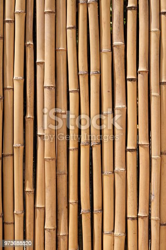 Bamboo wood wall background texture closeup vertical