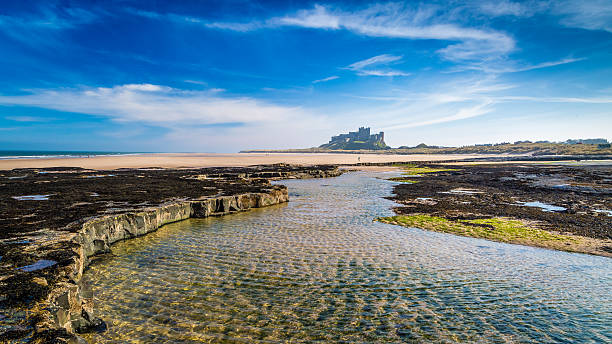 Bamburgh Castle on the Northumberland coast, England Bamburgh Castle on the Northumberland coast, England northeastern england stock pictures, royalty-free photos & images