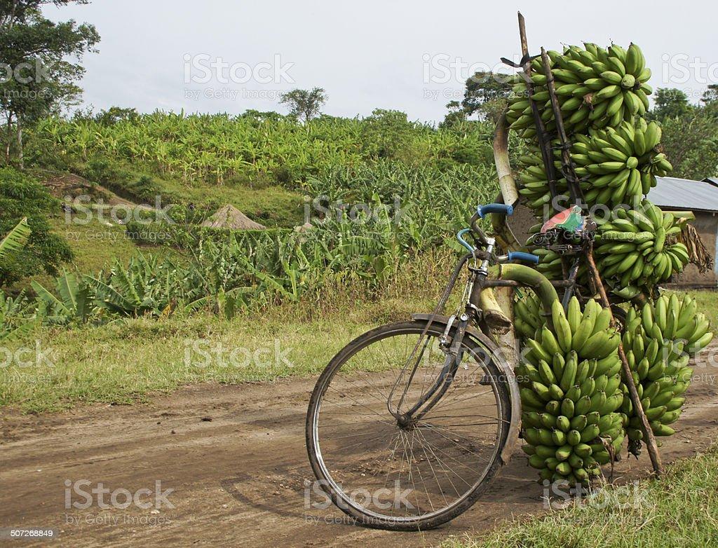 Banana Bike stock photo