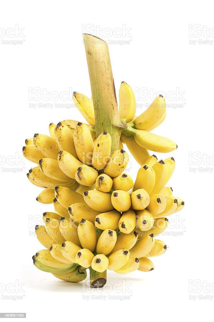 Banana bunch cluster stock photo
