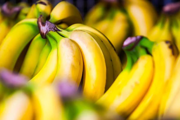 Bananen Bund – Foto