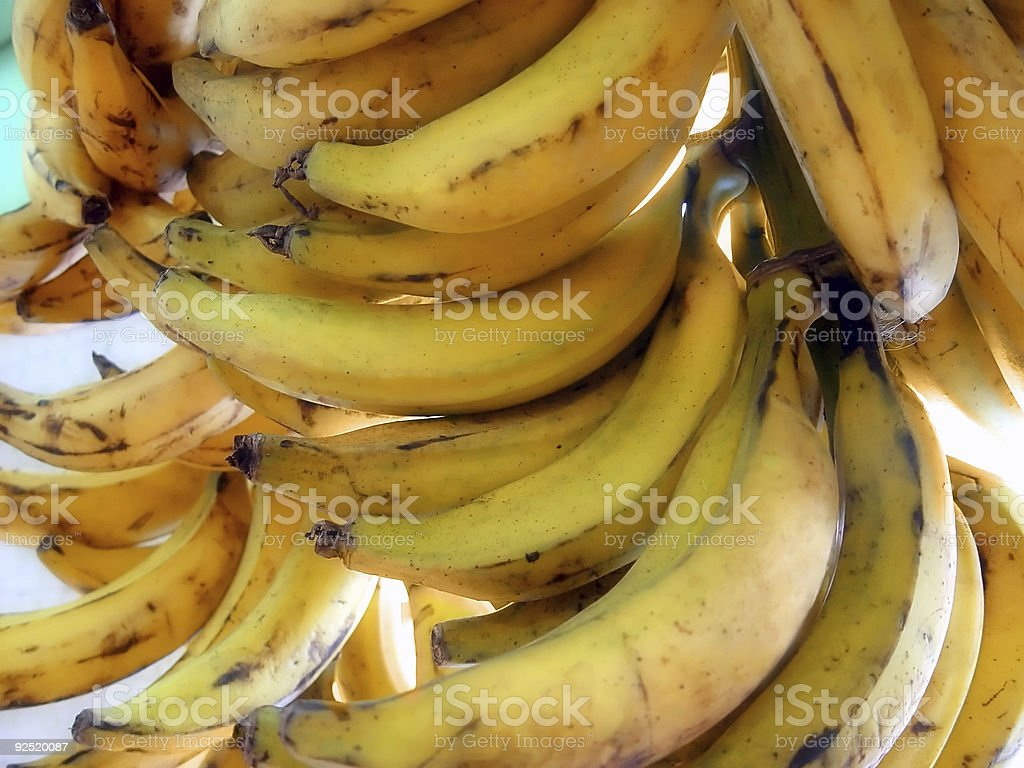 Banana Bunch royalty-free stock photo