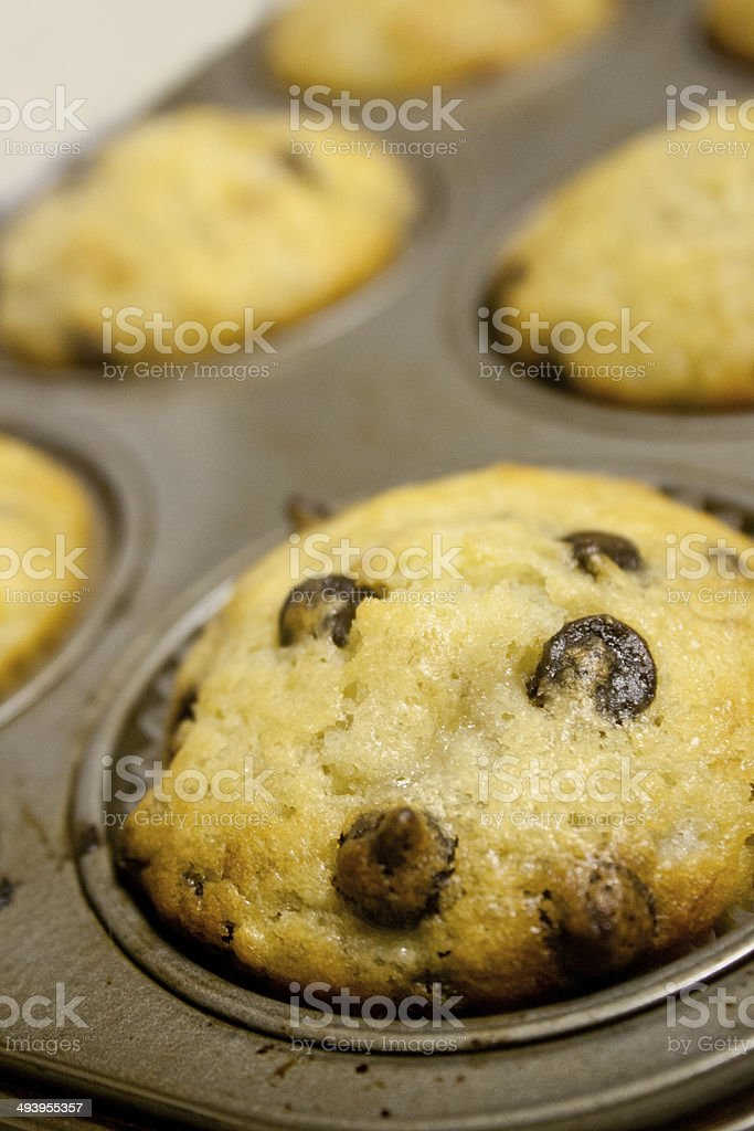 Banana Chocolate Chip Muffins royalty-free stock photo