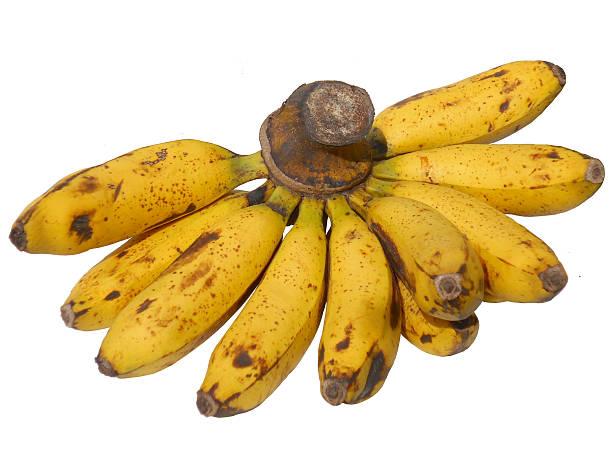 バナナのフルーツ ストックフォト