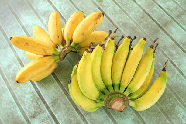 Banana ripen in groups on the table background