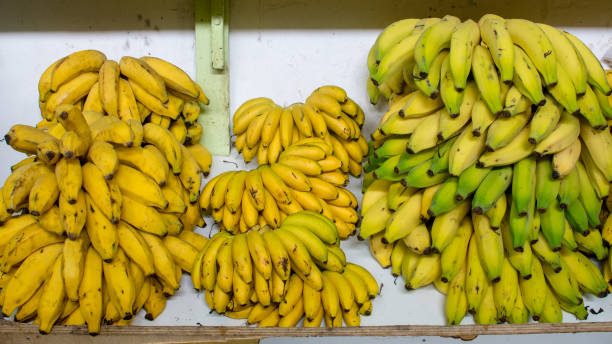 Bananas for sale in market stock photo