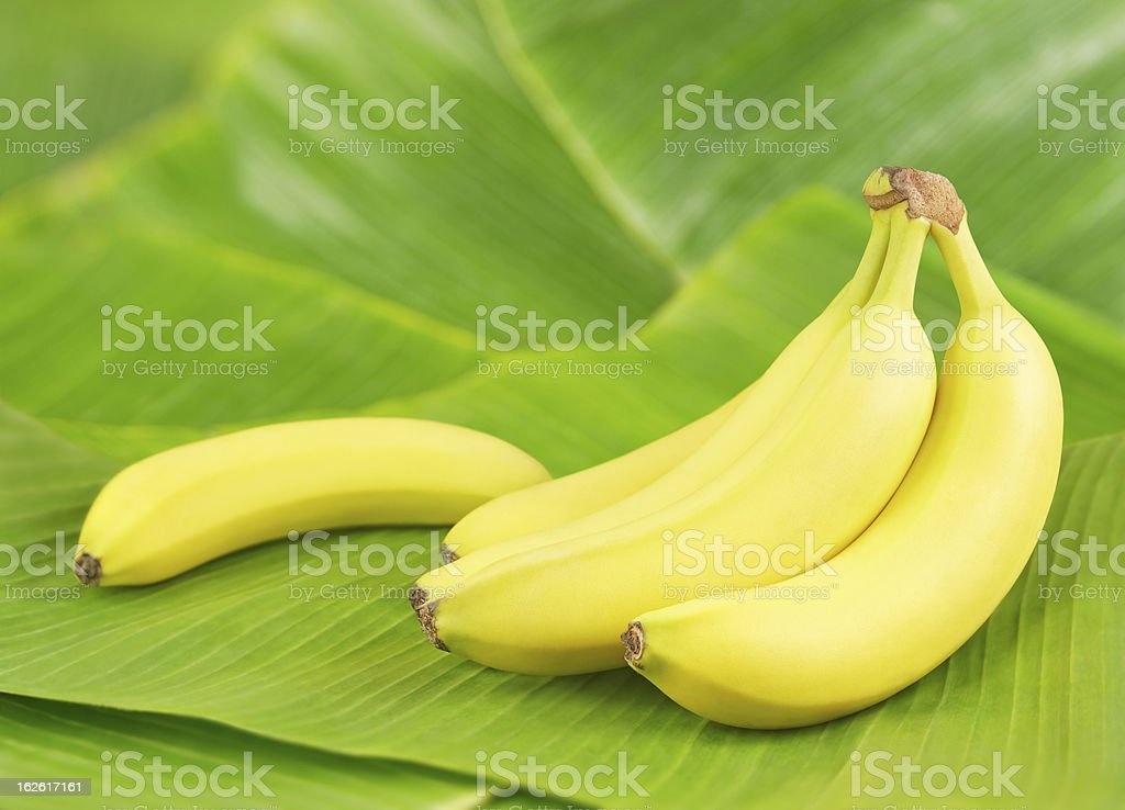 Bananas on leaves stock photo