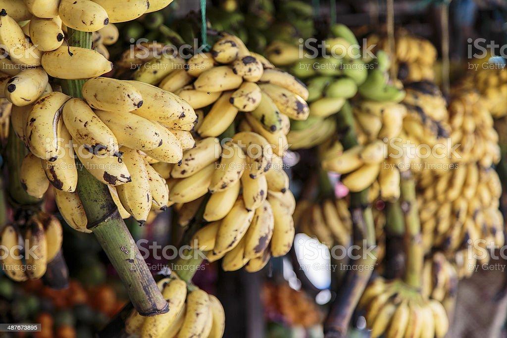 Bananas on the market royalty-free stock photo