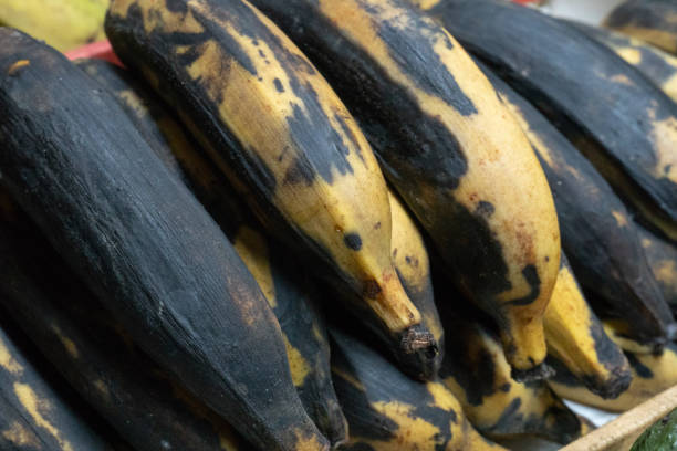 bananas - ripe stock photos and pictures