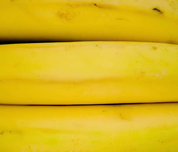 de bananes - jungle menu photos et images de collection