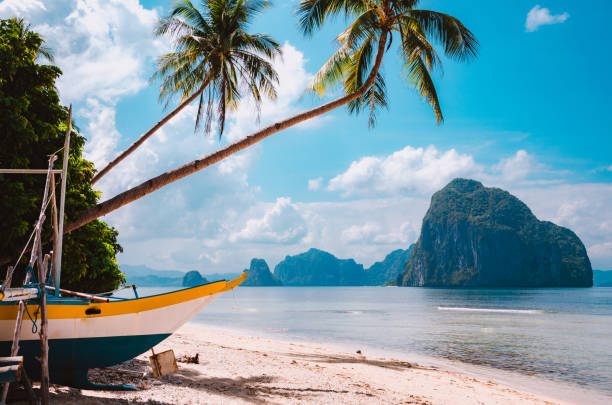 banca boat on shore under palm trees.tropical island scenic landscape. el-nido, palawan - philippines stock photos and pictures