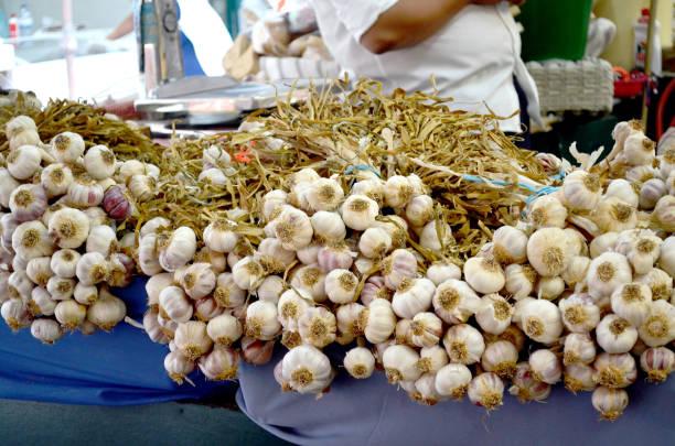 bancarella di aglio al mercato di Bolhão, Porto Fotografia di mazzi di aglio in vendita al mercato più caratteristico di Oporto. mercato stock pictures, royalty-free photos & images