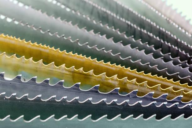 sägeband. anordnung der ventilatoren, makro - fuchsschwanz stock-fotos und bilder
