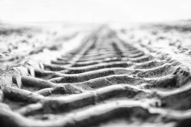 Band tracks on the sand background Band tracks op de zand achtergrond tire track stock pictures, royalty-free photos & images