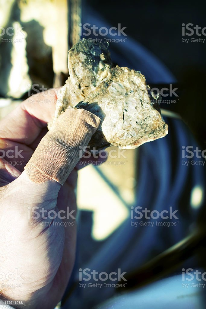 Bandaged Thumb Holding an Oyster - effect royalty-free stock photo
