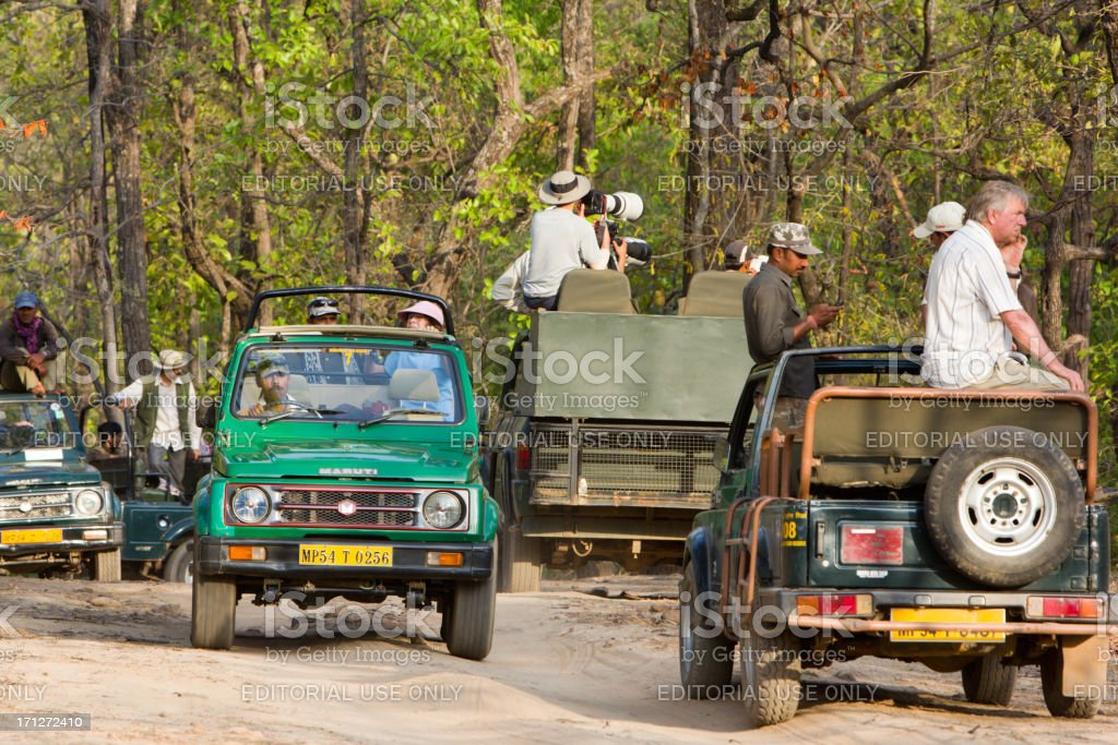 Bandhavgarh NP in Madhya Pradesh, India royalty-free stock photo