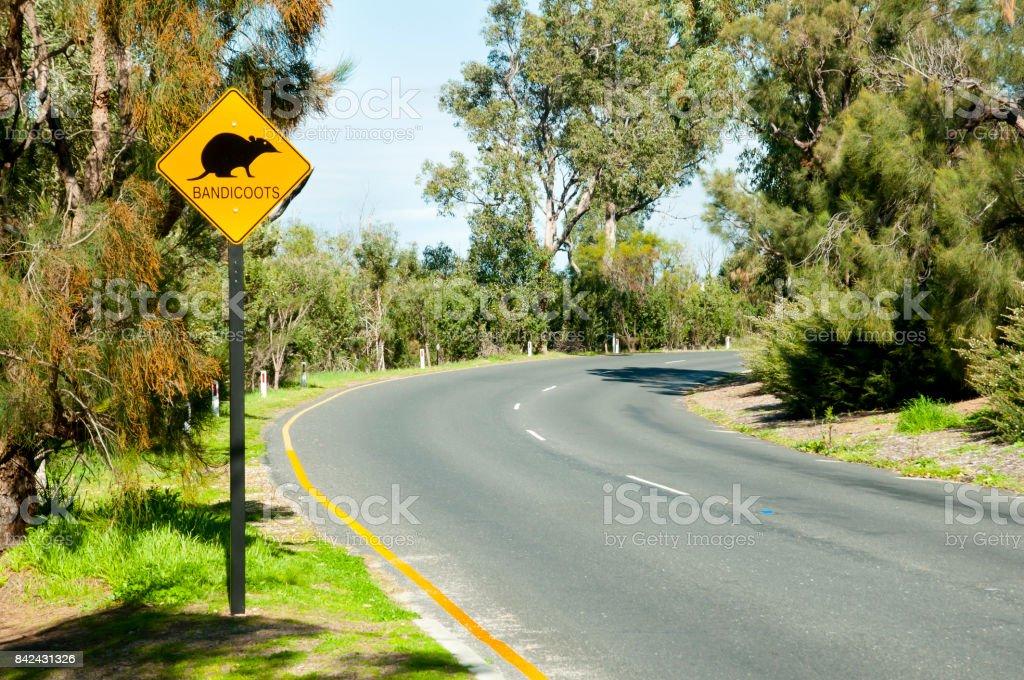 Bandicoots Road Sign - Australia stock photo