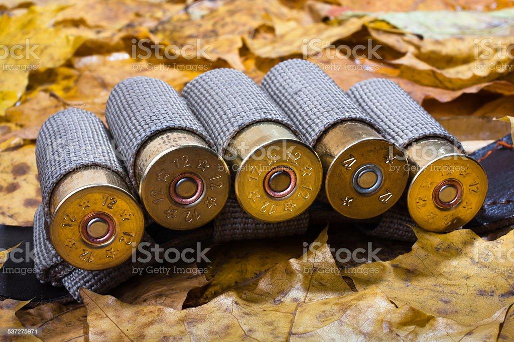 bandoleer on the autumn leaves stock photo