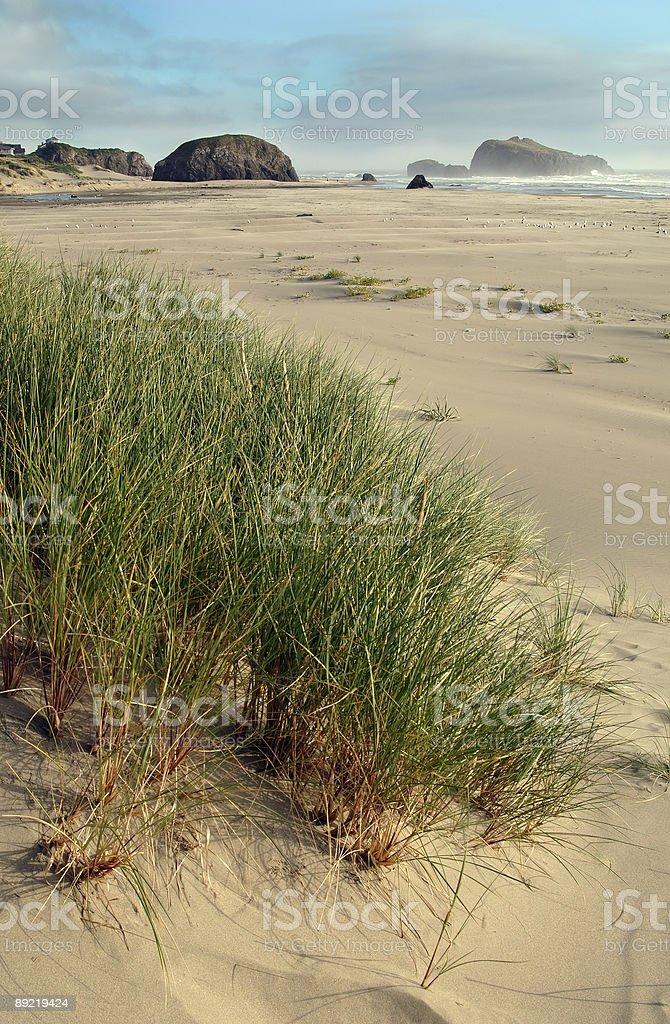 Bandon Beach, Oregon stock photo