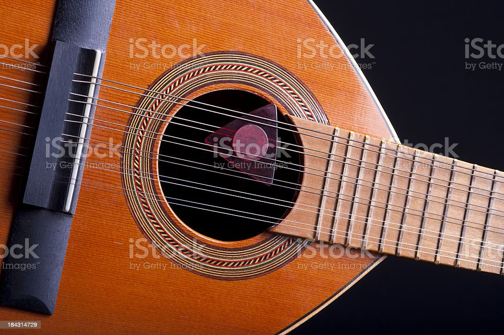 Bandurria stock photo