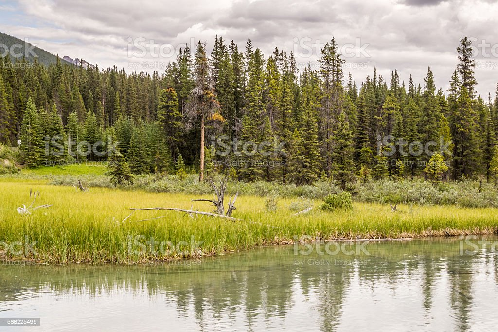 Banff National Park, Bow Lake in the Canadian Rockies, stock photo