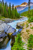 Mistaya Canyon along the Icefields Parkway in Banff National Park in the Canadian Rockies