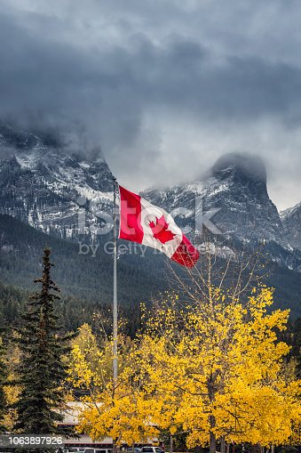 Canadian flag with yellow larch near Canmore, Banff National Park, Canada.