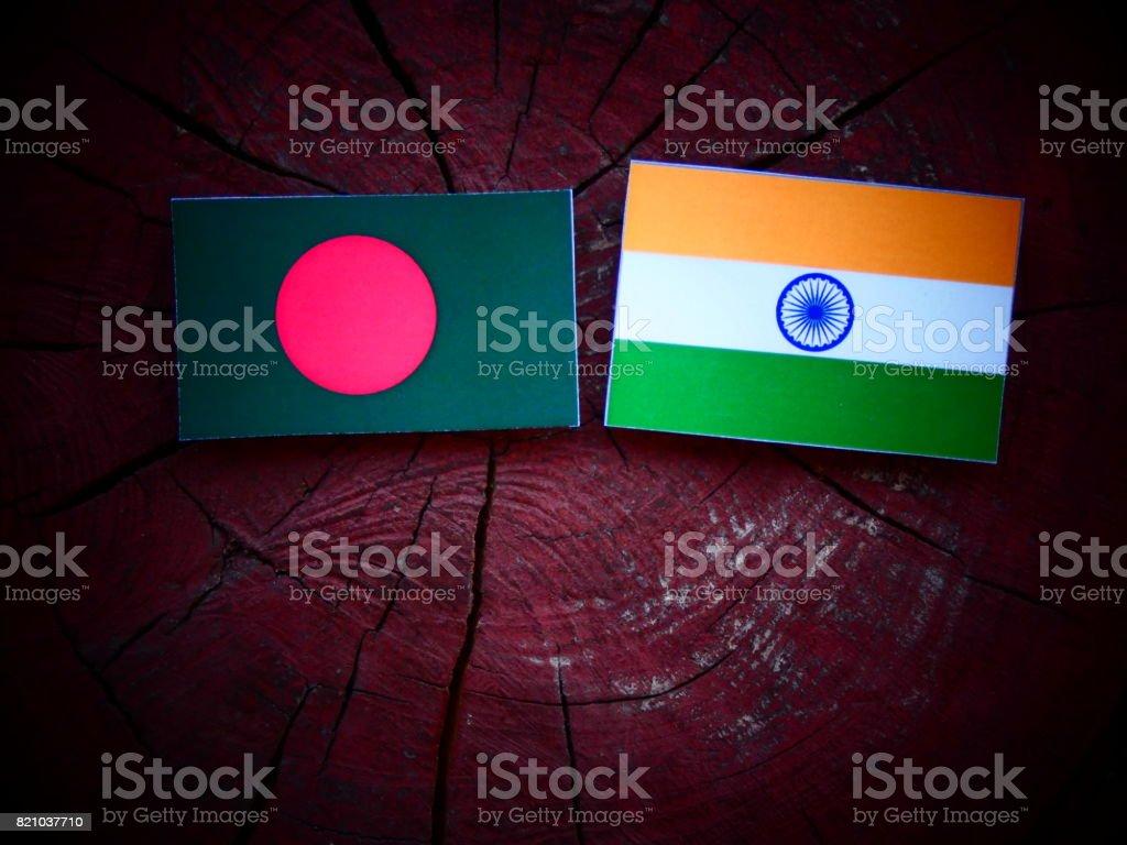 Bangladesch Fahne mit indischen Flagge auf einem Baumstumpf, isoliert – Foto