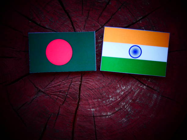 Bangladesh flag with Indian flag on a tree stump isolated stock photo