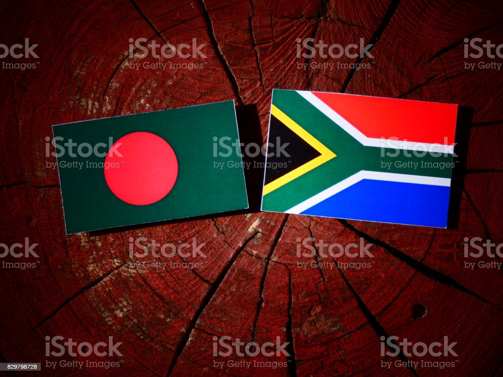 Bangladesh flag with South African flag on a tree stump isolated stock photo