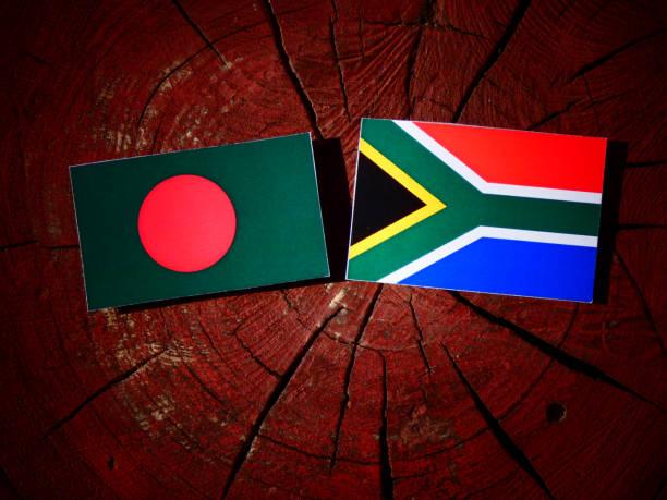 Bandeira de Bangladesh com Sul-Africano bandeira em um toco de árvore isolado - foto de acervo