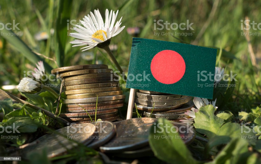 Bangladesh flag with stack of money coins with grass and flowers stock photo