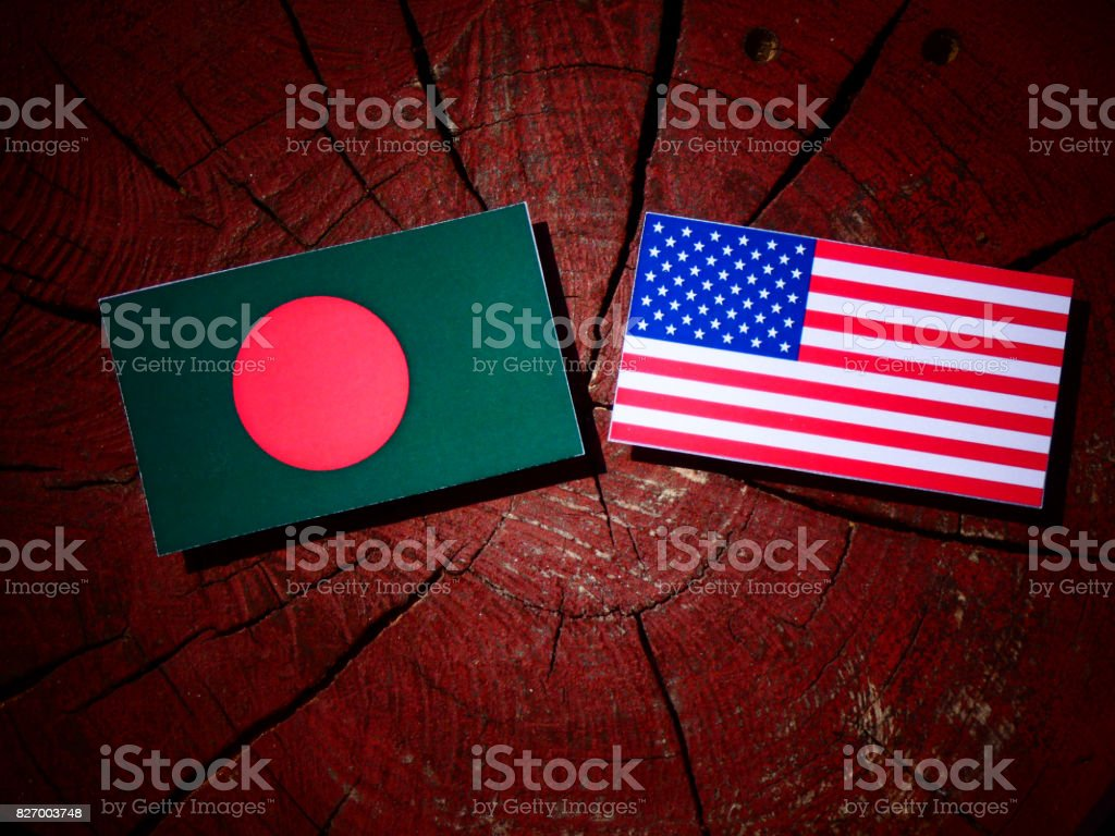 Bangladesh flag with USA flag on a tree stump isolated stock photo