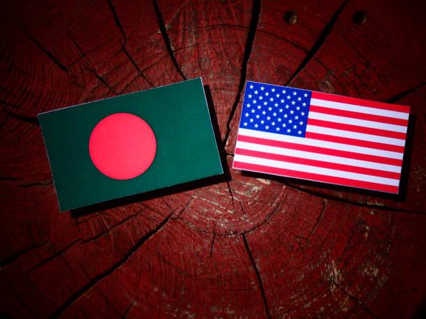 Bangladesh flag with USA flag on a tree stump isolated stock photo