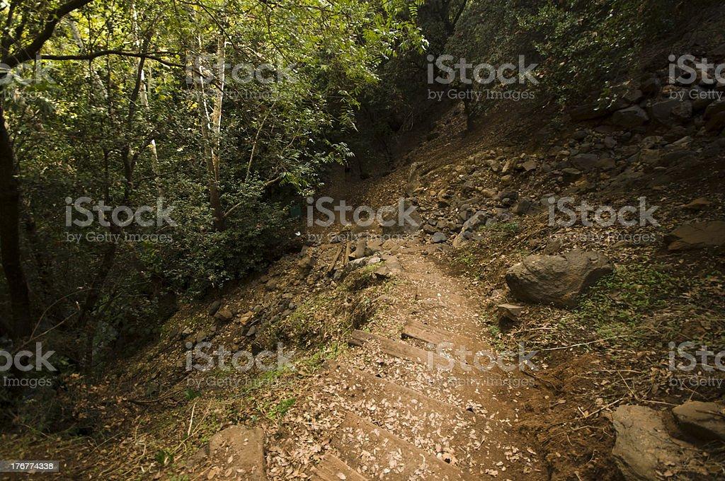 Banias Nature Reserve, israel royalty-free stock photo