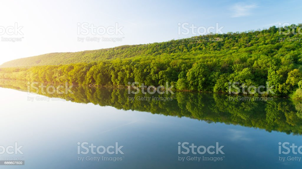 Bank of river with thick forest reflected in water royalty-free stock photo