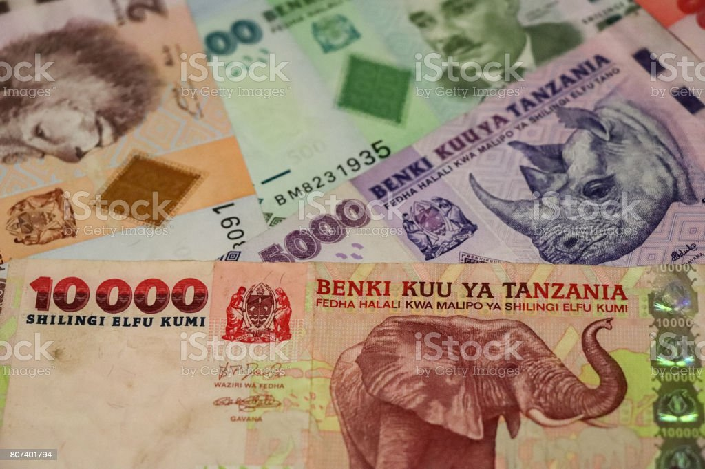 Banknotes Of Tanzania Of Different Types And Years World