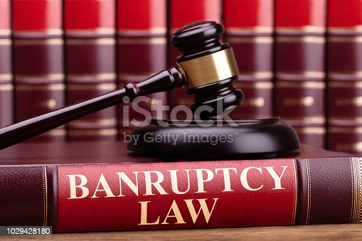 612372074 istock photo Bankruptcy Law Book With A Judge Gavel 1029428180