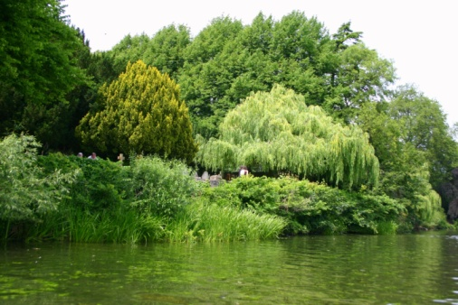 Banks of the River Avon