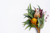 Beautiful flat lay floral arrangement of mostly Australian native flowers, including protea, banksia, kangaroo paw, eucalyptus leaves and gum nuts on a white background.