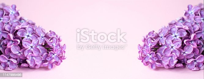 1147995495 istock photo Banner for a site or facebook with branches of purple lilac. 1147995495