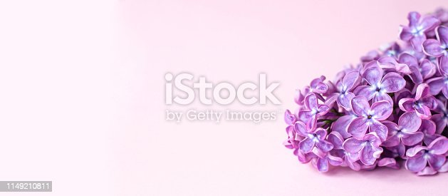 1147995495 istock photo Banner for a site or facebook with branches of purple lilac. 1149210811