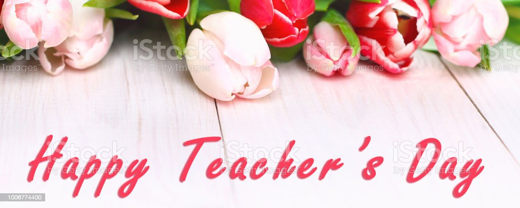 Banner Happy Teachers Day With Tulip Flower Message For Teacher In Special  Day Of Education Tulip Bouquet Stock Photo - Download Image Now