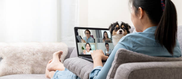 Banner of Asian woman on sofa and team on laptop screen talking and discussion in video conference and dog interruption.Working from home, Working remotely, Pets interruption and Self-isolation. stock photo