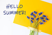 Hello summer banner with blue flowers on a yellow and white background.