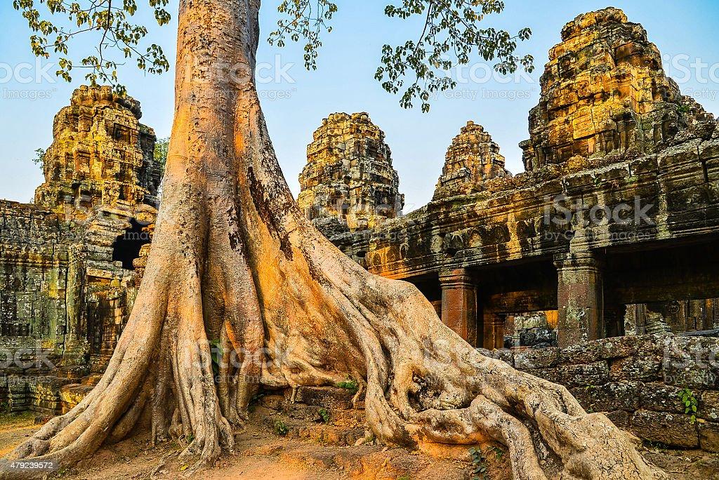 Banteay Kdei at Sunset - Angkor, Cambodia stock photo